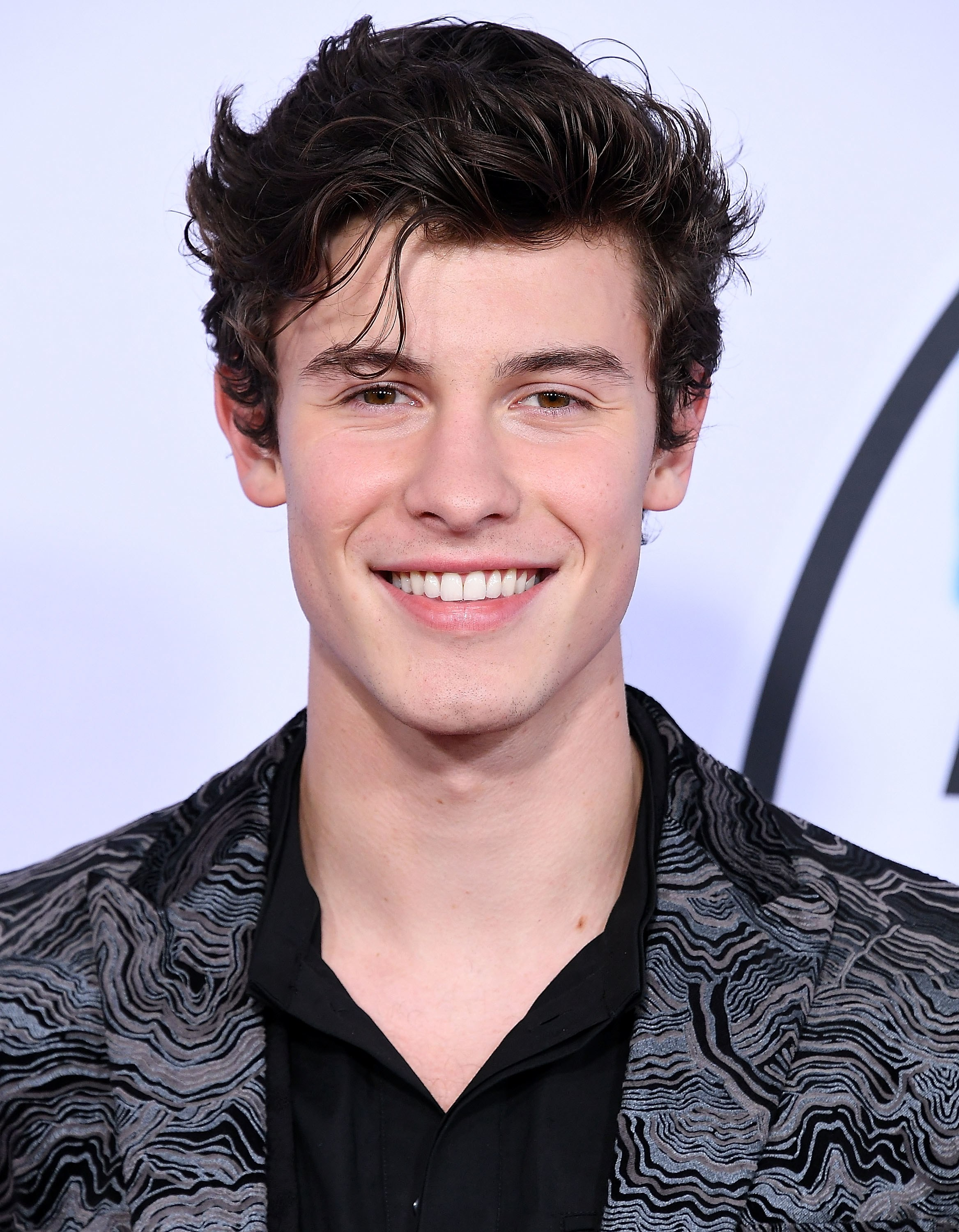 Shawn Mendes Wins Big At 2018 iHeartRadio MMVAs - The Hollywood Digest