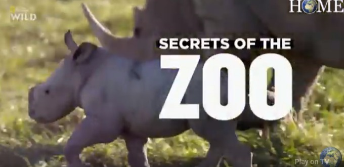 Secrets of the Zoo brings tears and laughter to Nat Geo WILD