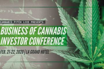 Raise Money for Cannabis Business Plan
